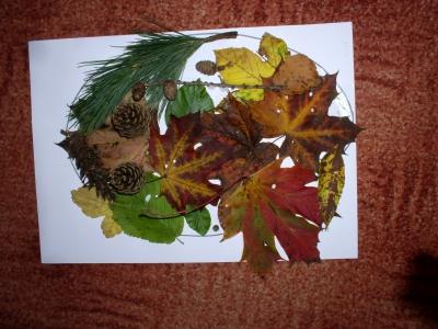 Vyučování v podzimní přírodě