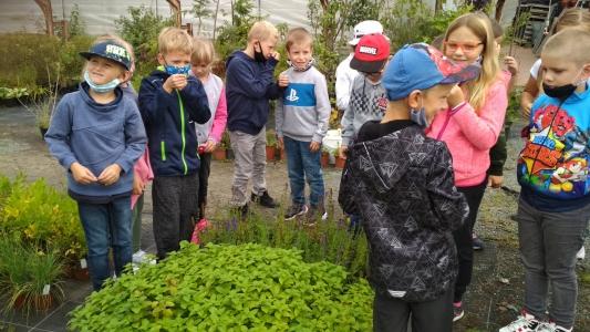 Fotogalerie Malý zahradník, foto č. 8